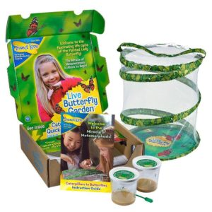 Butterfly Garden Kit for Kids